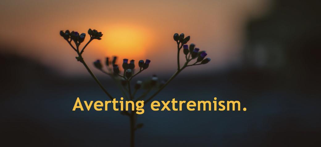 Looking Through Muslim's Eyes: What has gone wrong? terrorism doe not grow in vacuum
