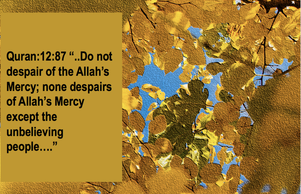 Individual Accountability. Do not despair of Mercy of Allah. qpeace.net